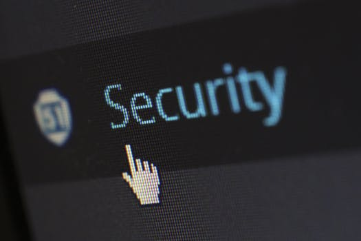 security crazydiscostu